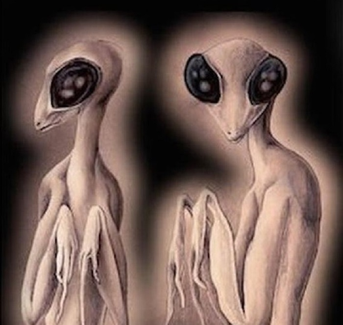 Insectoids - the least common extraterrestrial humanoids 98