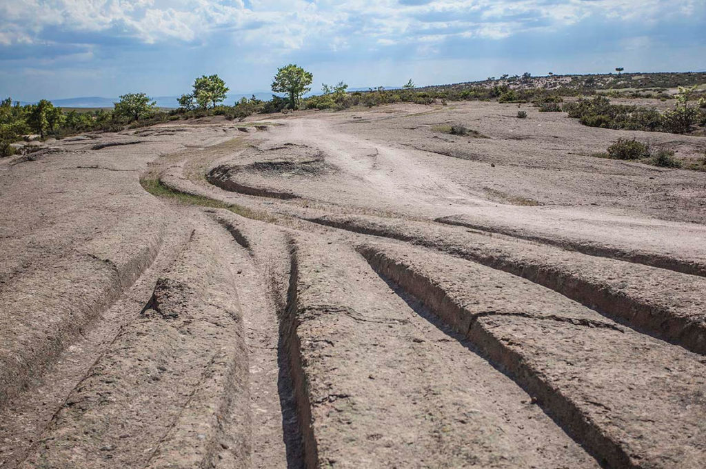 """14 million years"" old vehicle tracks discovered(Video) 92"