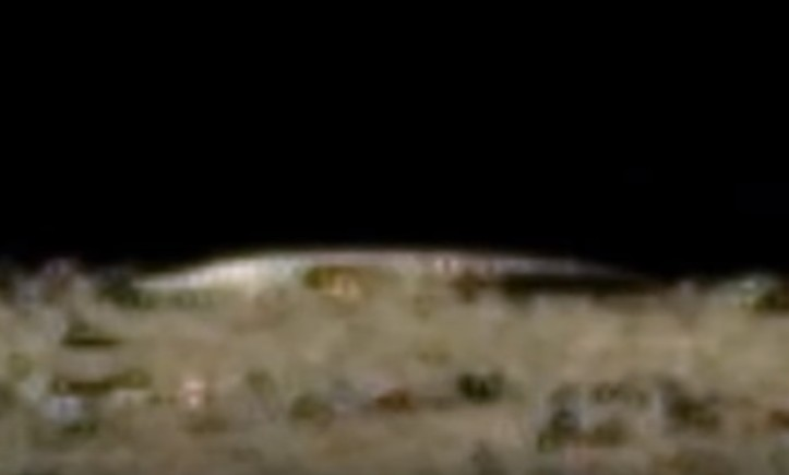 Alien structures were photographed by the Chinese Chang'e 3 Lander on Moon 16