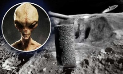 Harvard astronomer: Fossils of Alien Creatures and Technology could be on the Moon 90
