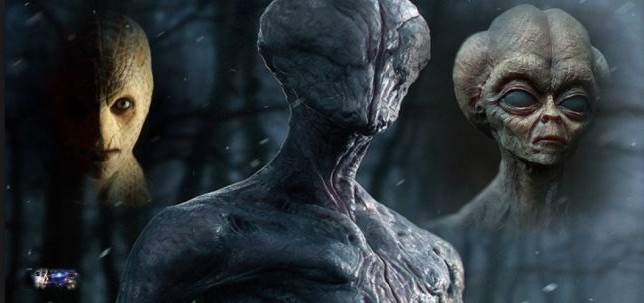 5 million Extraterrestrials live in the United States in Human form 94