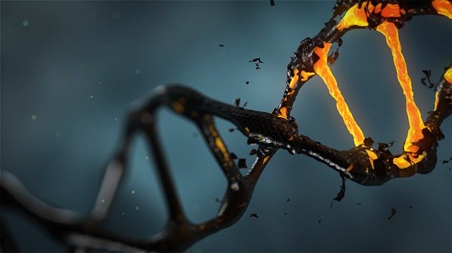 DNA is only one among millions of possible genetic molecules