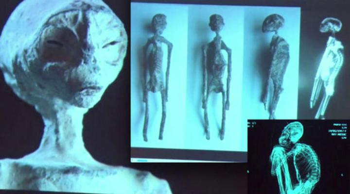 Update on the Nazca 3-Finger Mummies Scientific Study 23