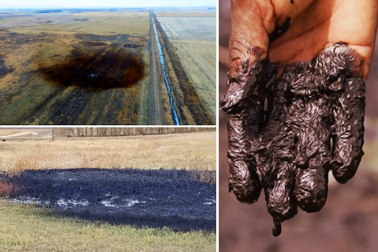 Latest Keystone Pipeline Oil Spill is Nearly 10 Times Worse Than Initially Thought 88