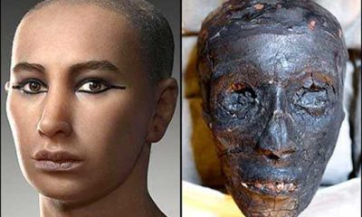 Was Pharaoh Tutankhamun killed, or died from natural causes? 86