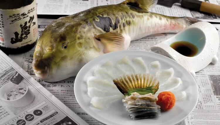 Why does the most poisonous fish need poison? 10