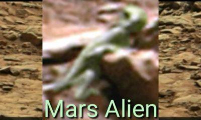 Extraterrestrial captured by NASA camera: Mars anomaly 105
