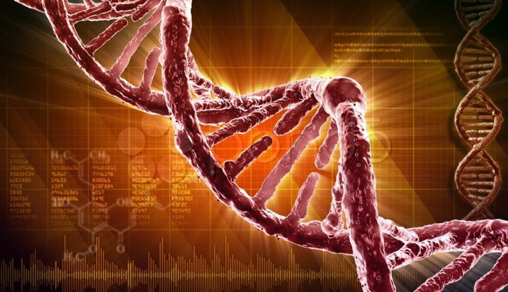 DNA would not be unique: there may be millions of possible genetic molecules 3
