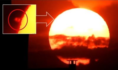 Researcher records two huge UFOs near the Sun 93