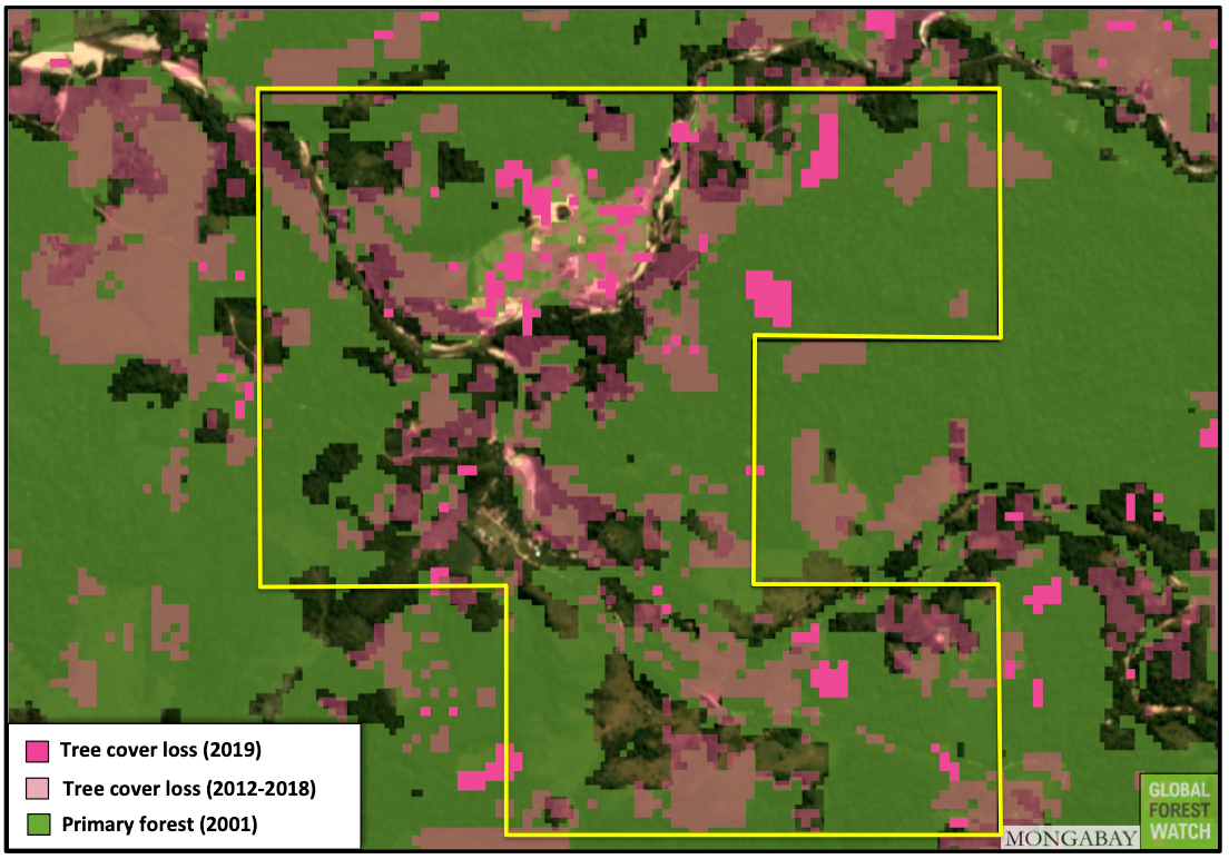 Gold mine operating without license destroys primary forest in protected area 110