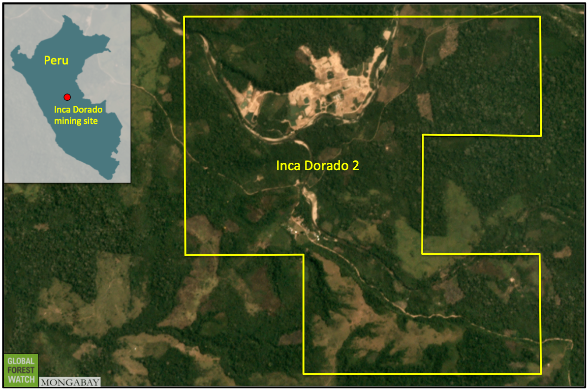 Gold mine operating without license destroys primary forest in protected area 105