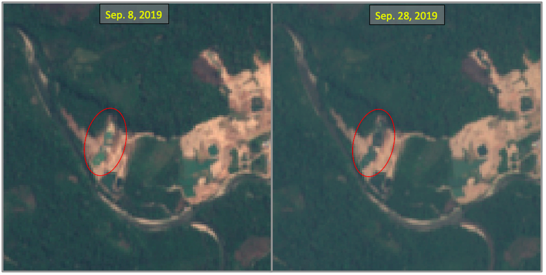 Gold mine operating without license destroys primary forest in protected area 111