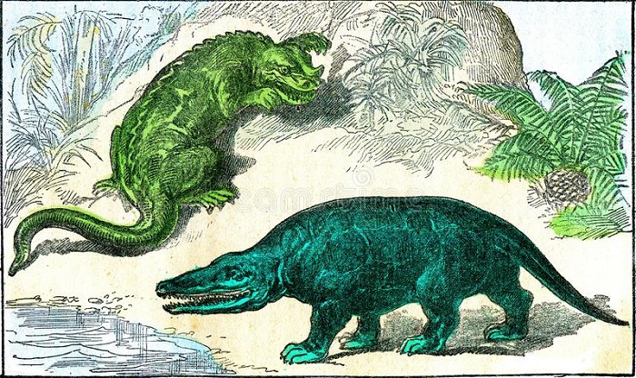 The dinosaurs probably looked very different 26
