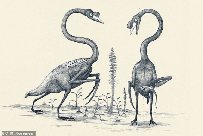 The dinosaurs probably looked very different 28