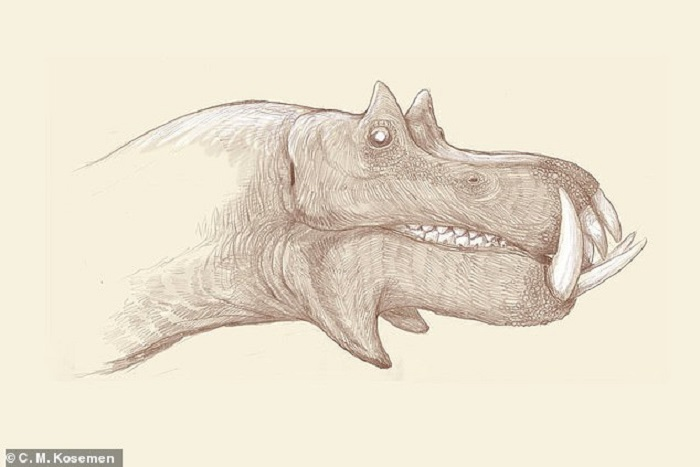 The dinosaurs probably looked very different 31