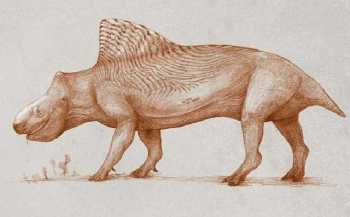 The dinosaurs probably looked very different 34