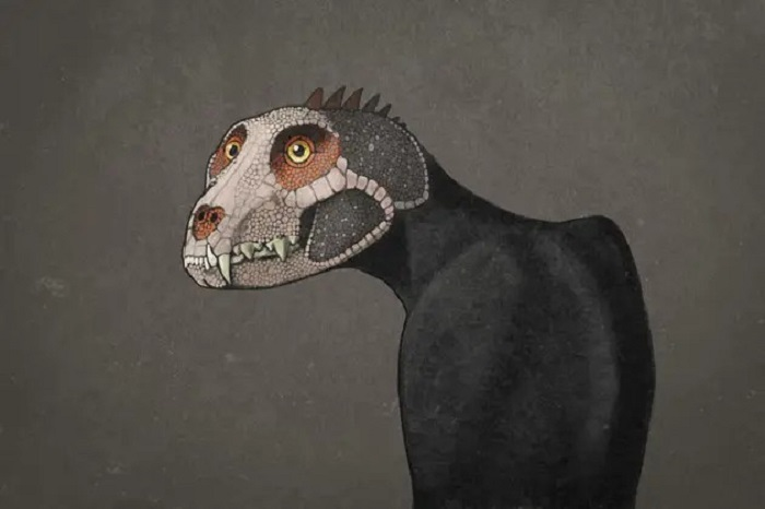The dinosaurs probably looked very different 36