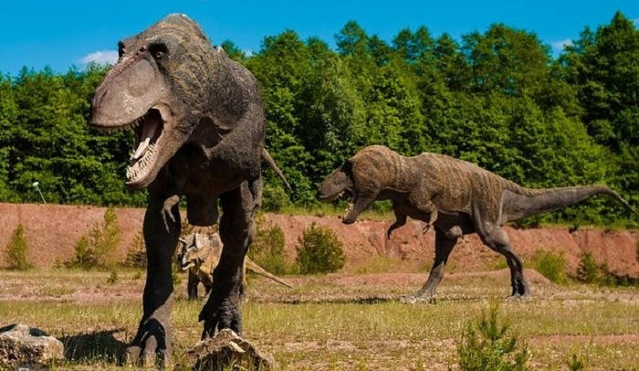 It turns out that dinosaurs start to disappear before the asteroid strike 5