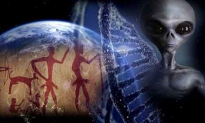 Aliens from Pleiades on Earth 86