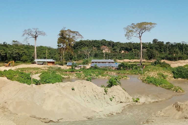 Gold mine operating without license destroys primary forest in protected area 113