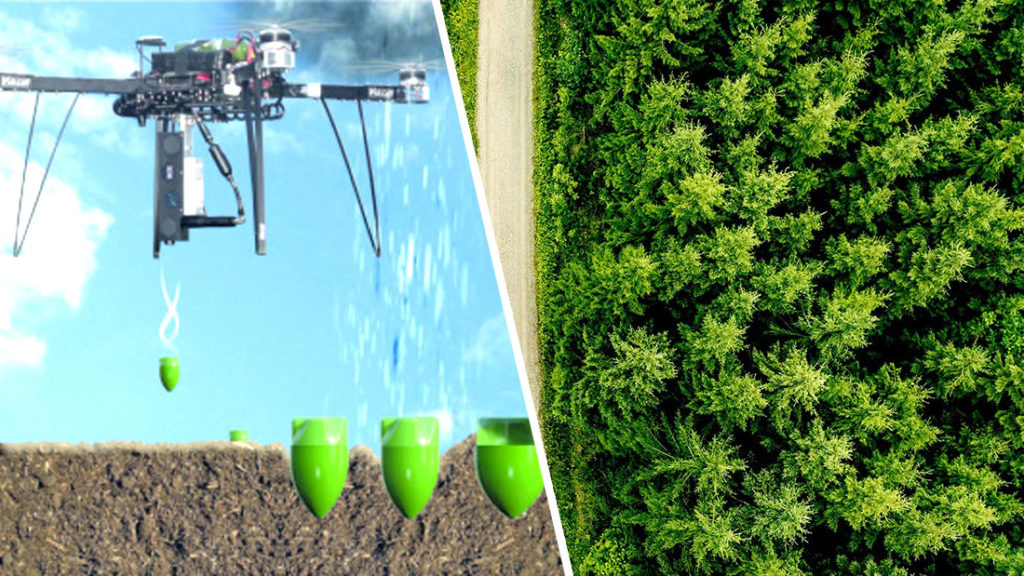 "Scientists will plant one billion trees using drones and ""secret"" ingredients 86"