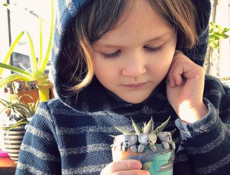 Preschooler raised 200 thousand dollars to save animals in Australia 88