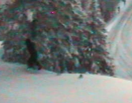 Who are these snow people walking around Washington? 9
