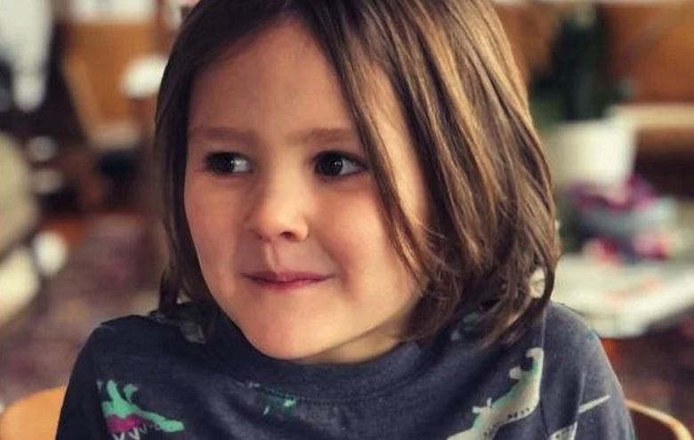 Preschooler raised 200 thousand dollars to save animals in Australia 86