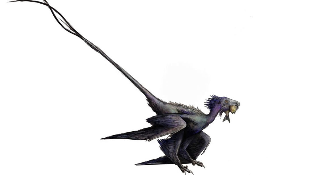 A previously unknown species of winged dinosaur very similar to a dragon discovered in China 3