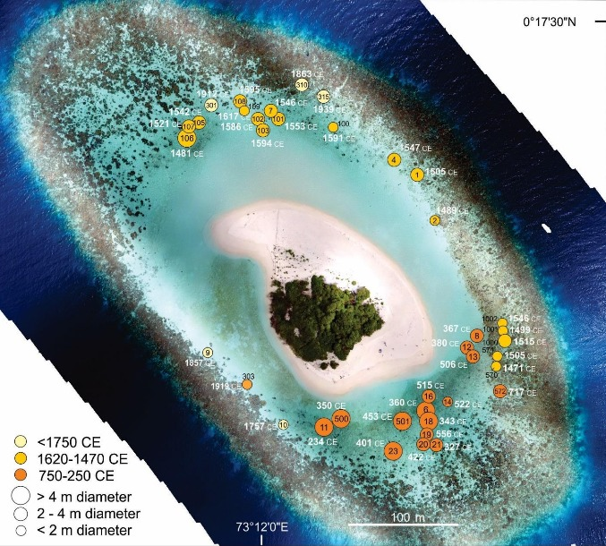 Maldives Atoll, on which samples of dated corals were collected / © Paul S. Kench et al.