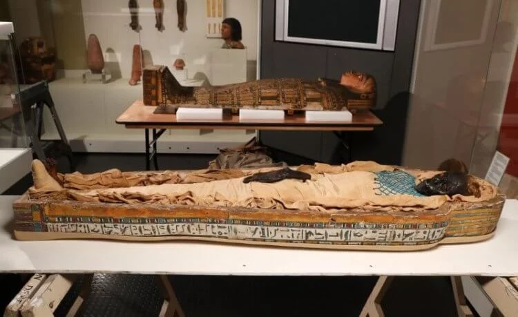 The mystery of the death of a woman mummified 2600 years ago is revealed 9
