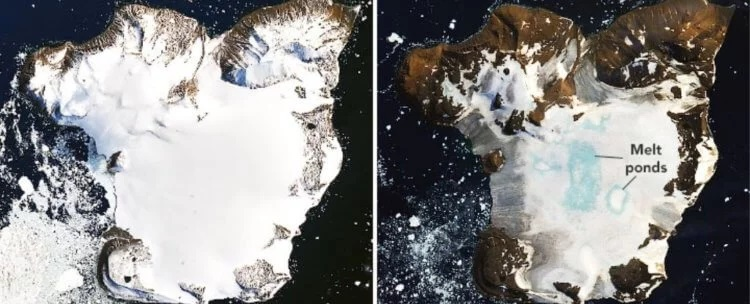 How much snow has melted due to record high temperatures in Antarctica? 7