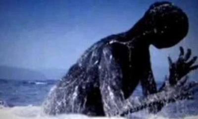 Ningen: A Humanoid Monster Hiding in the Antarctic 95