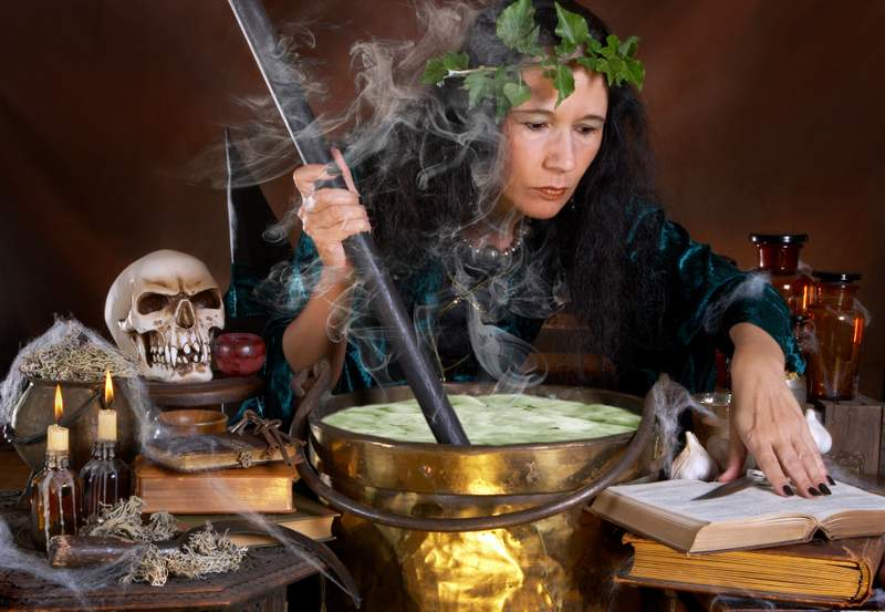 The witcher's potion. What is known about the mutagenicity of 'healing' herbs 1