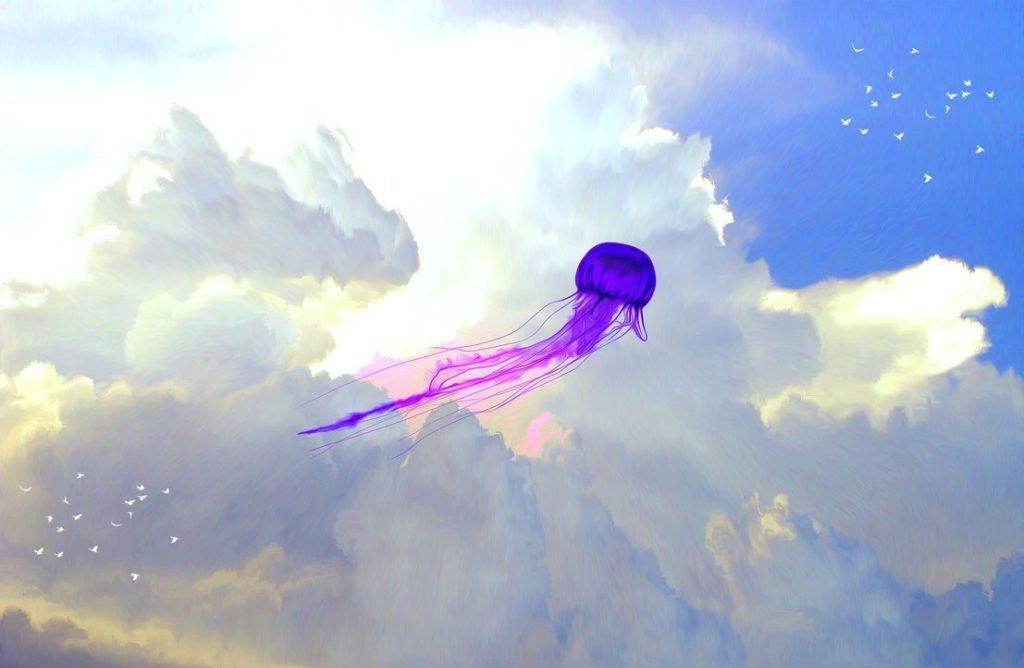 Various shaped UFO's flying all over the world 1