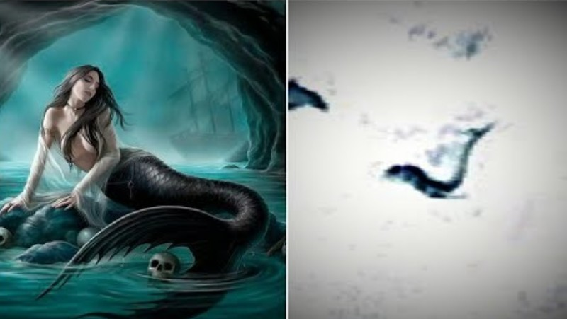 A creature assembling a Mermaid discovered in Antarctica: Google Earth user provides evidence 20