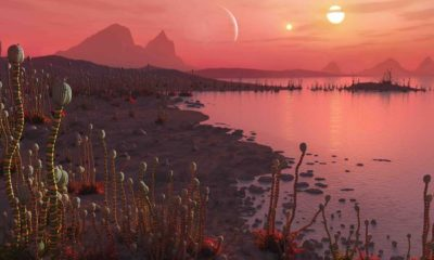 Hundreds of exoplanets with two suns discovered 96