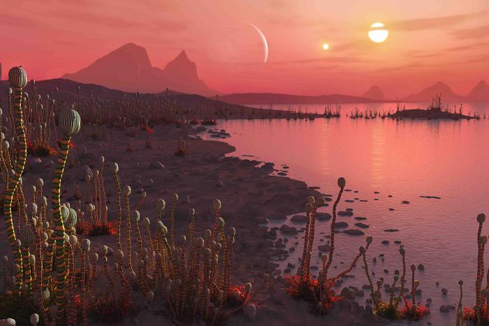 Hundreds of exoplanets with two suns discovered 7