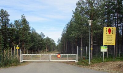 An incredible story: Contact with aliens in Karelia in 1917 93