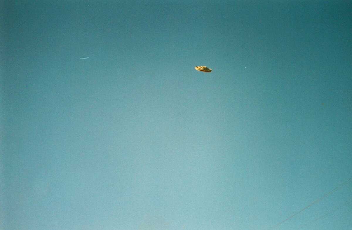 What do we know about UFOs? 10 assumptions about what aliens look like 6