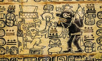 Mayan calendar points to 2020? 95