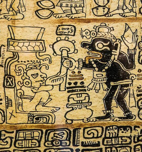 Mayan calendar points to 2020? 87