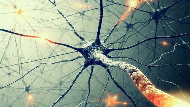 Consciousness Affects Reality: Repetition and consolidation of experience? 3