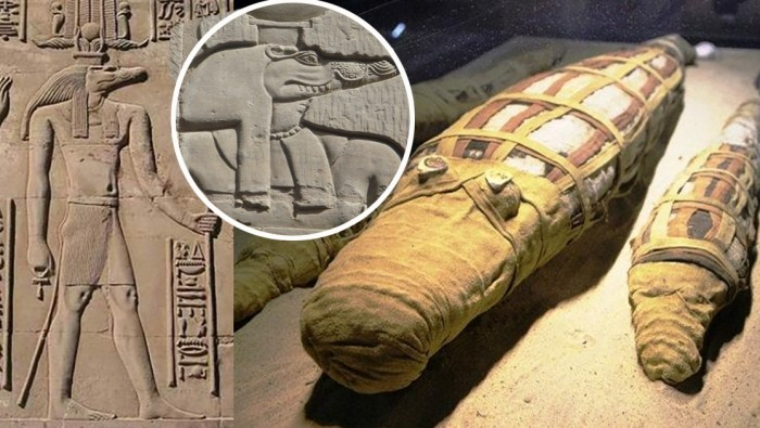 How the Egyptians worshiped a god with a reptilian head and why they needed thousands of crocodile mummies 88