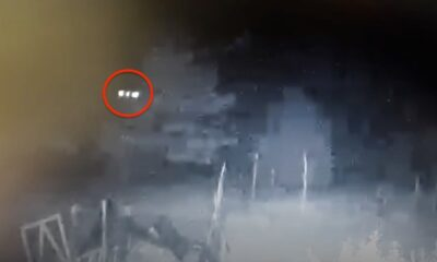 In Michigan, a surveillance camera recorded the one who mutilated hens. It turned out to be a UFO 88