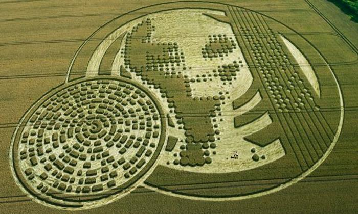 'Alien' message creativity. What the crop circles really hide 86