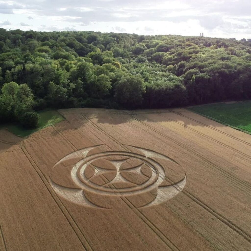 'Alien' message creativity. What the crop circles really hide 97