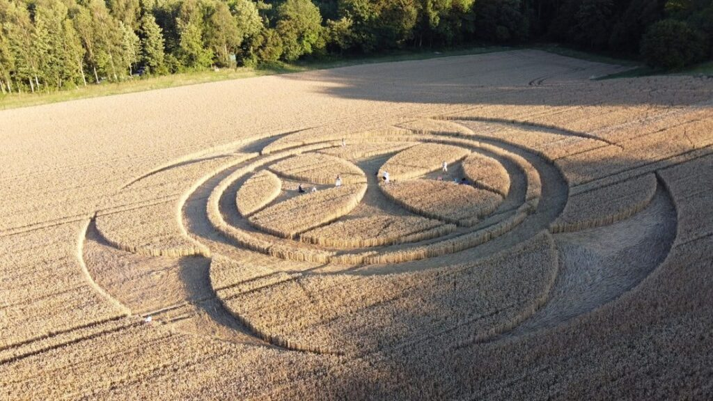 'Alien' message creativity. What the crop circles really hide 99