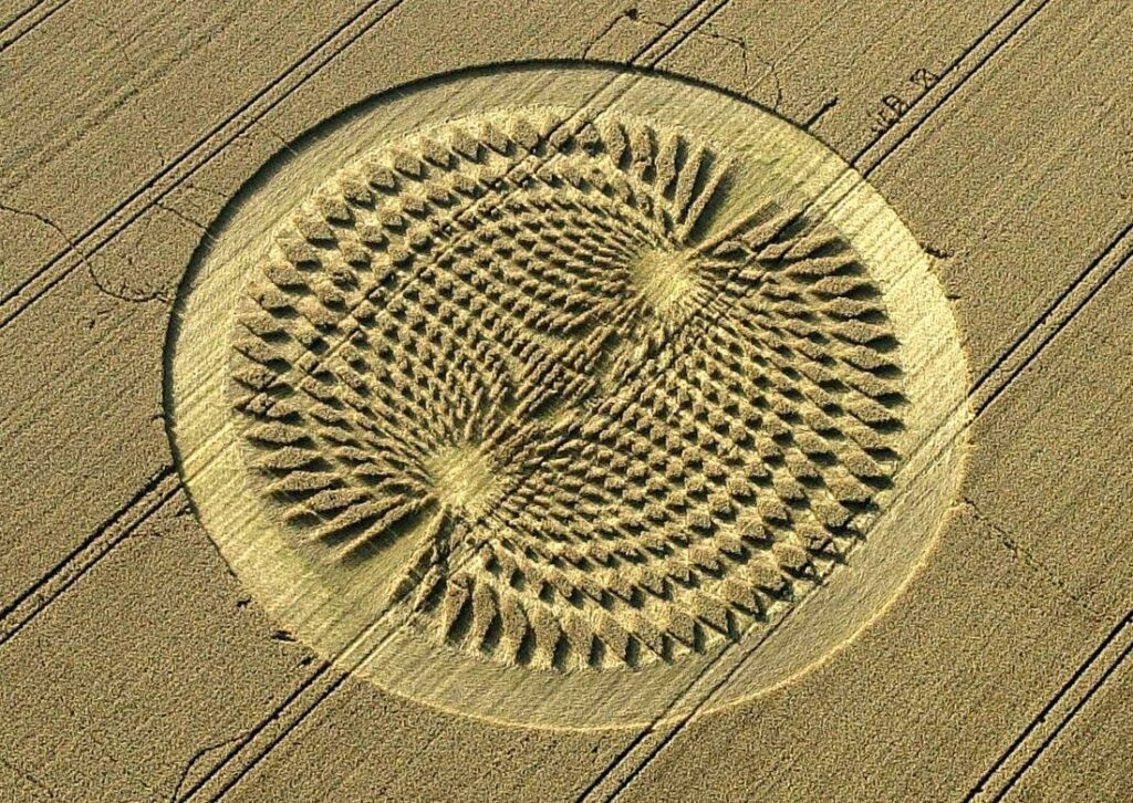 'Alien' message creativity. What the crop circles really hide 105