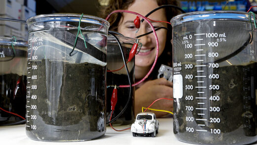Electric Dirt is teeming with mysterious new bacteria that could rewrite textbooks 15